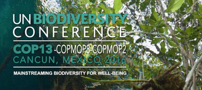Cancun Biodiversity Conference